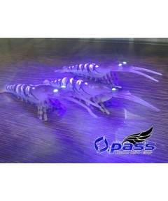 OPASS - SMART SHRIMP - 10