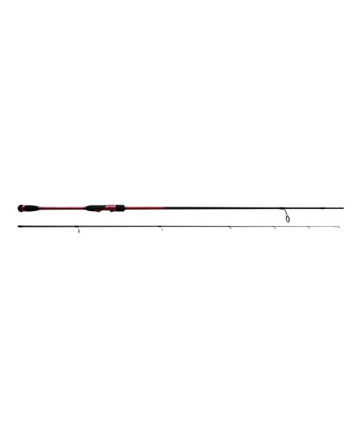 BLACK HOLE - Rods α INSHORE 2.43m / 8-28gr